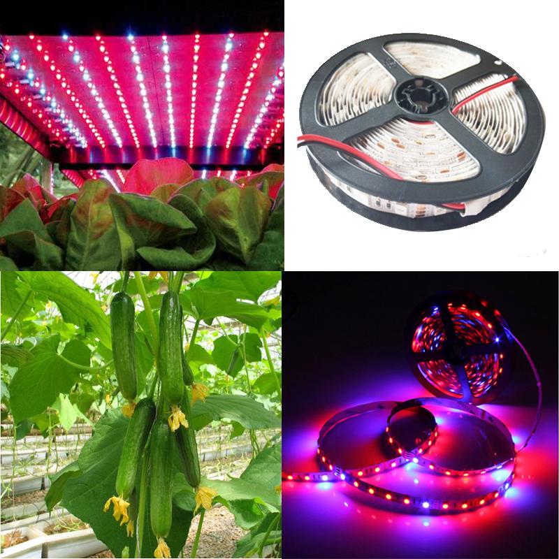 New 5050smd Flexible Plants Led Grow Strip Tape Light 4 1