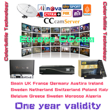 Cccam Europe Cline Server for 1 year Satellite Decoder Spain Sky UK Germany France Italy with 3rca av cable free shipping by DHL(China (Mainland))