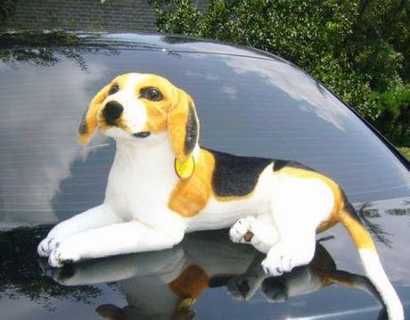 stuffed animal 30cm plush Beagle dog toy about 12 inch simulation doll great gift free shipping w036(China (Mainland))
