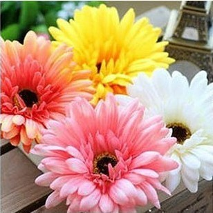 Hair accessory gerbera hair accessory corsage artificial flower chrysanthemum hairpin