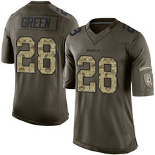 Men's #28 Darrell Green Elite Green Salute to Service Jersey 100% Stitched(China (Mainland))