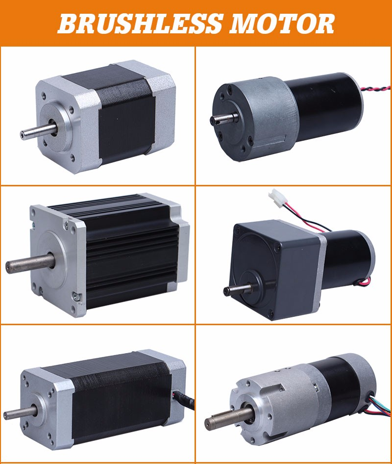 High Efficiency Electric Bldc Brushless Dc Gear Motor For