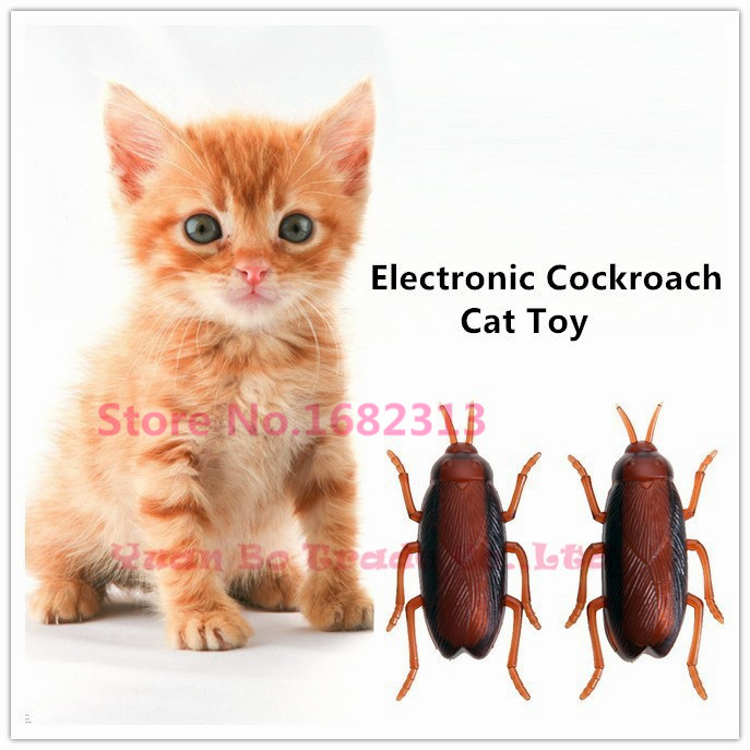 Cat Toy , Electronic Cockroach Cat Toy, Fun Cat Toy with Battery 2015 new arrival free shipping(China (Mainland))