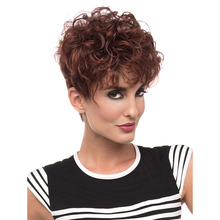 Hot Sale Fashion Cheap Short Curly Wig For Women African American Wig For Black Women Kinky Curly Synthetic Hair Free Shipping