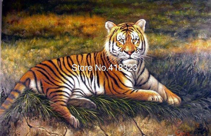 амурский тигр в траве Big