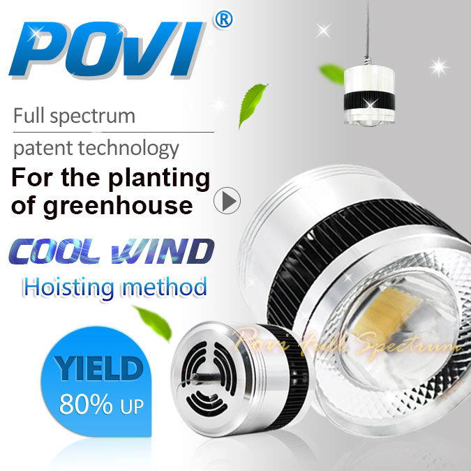POVI 50W70W100Wfull spectrum grow lamp LED Grow Light Full Spectrum 380-780nm For Indoor Plants and Flower with Very High Yield(China (Mainland))
