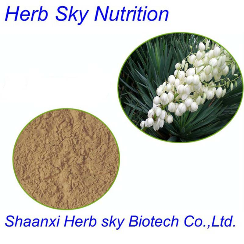 With Competitive price Spanish bayonet extract/Yucca Schidigera extract 400g/lot<br><br>Aliexpress