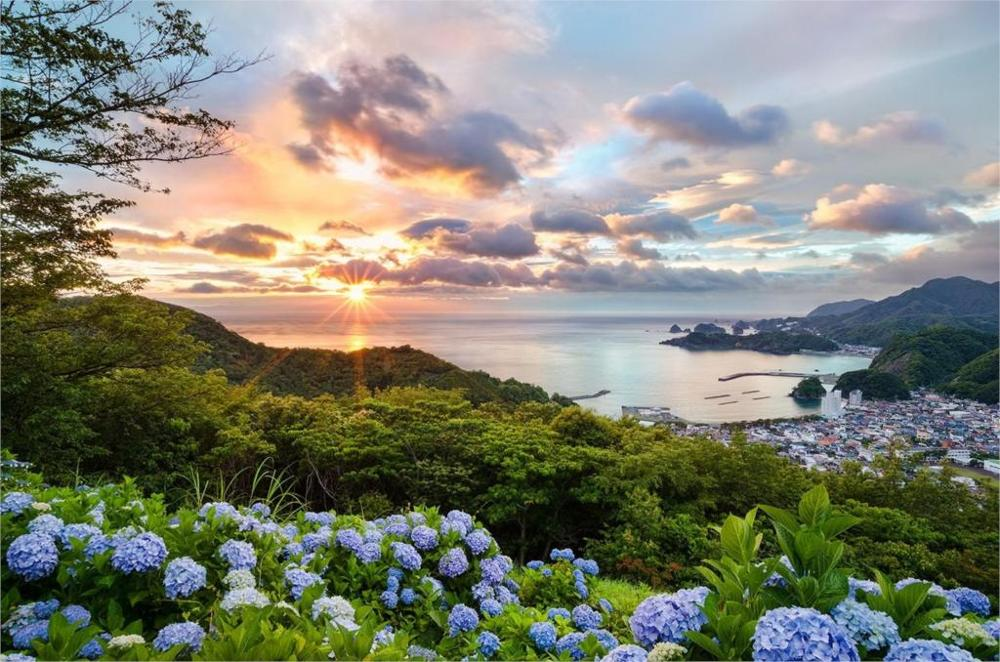 http://g02.a.alicdn.com/kf/HTB17gheLXXXXXasXXXXq6xXFXXXQ/Soggiorno-decorazione-della-parete-di-casa-poster-di-stoffa-Giappone-tramonto-paesaggi-urbani-oceani-fiori-alberi.jpg