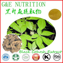 Factory Price black cohosh extract made in China 900g(China (Mainland))