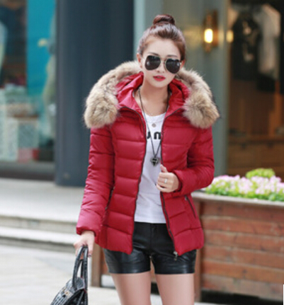 free Shipping 2015 new winter coat cotton dress lady down big fur coat jacket slim girl(China (Mainland))