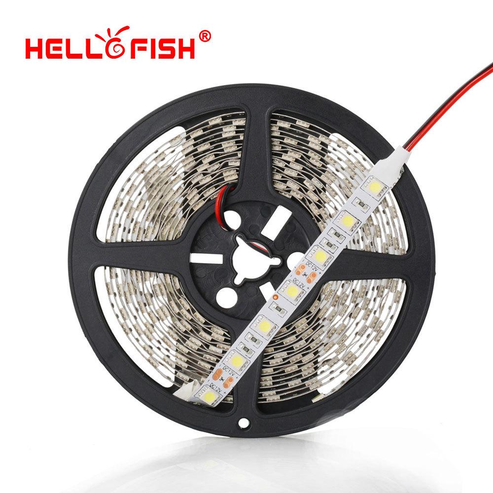 Hello Fish High Quality 5m 300 LED 5050 LED strip light,12V LED tape,RGB/ white/warm white/blue/green/red/yellow, Free Shipping(China (Mainland))