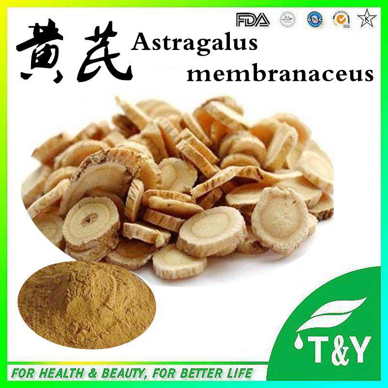 High quality astragalus membranaceus extract/astragalus extract powder/astragalus<br><br>Aliexpress