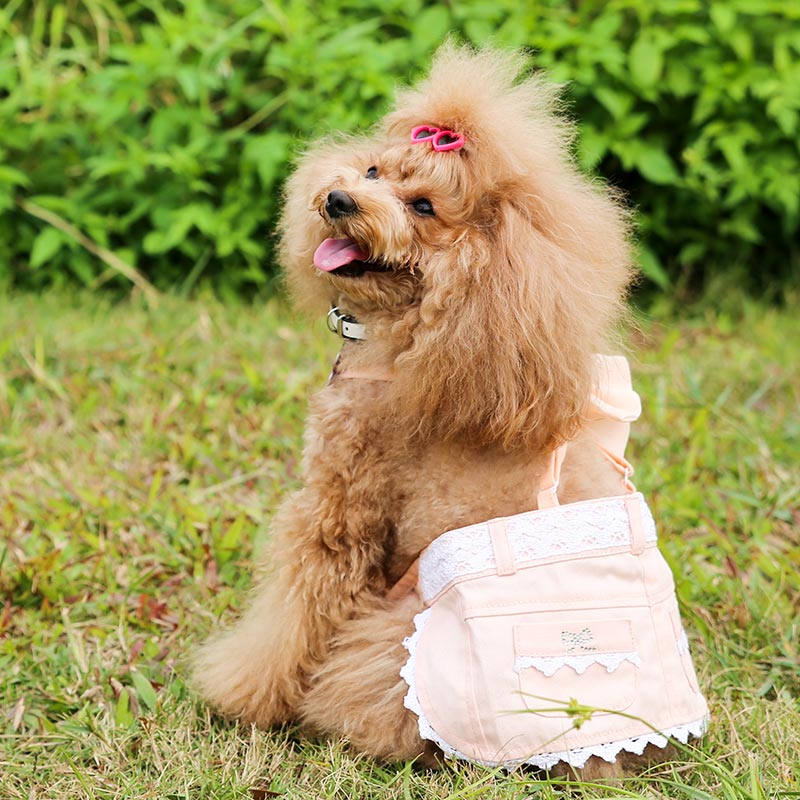Summer Pet jumpsuit Dog Dress Skirt Cute Outfits Puppy Clothes Apparels Size Clothing for Dog XS-XL Free Shipping CX-01(China (Mainland))