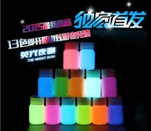 Mixed 12 colors Luminous Acrylic body paints,5 pieces/lot,super bright fluorescent paint,pigment Noctilucent powder,glow in dark(China (Mainland))