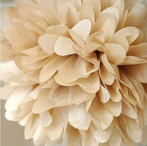 Free Shipping 10pcs 12Inch Tissue Paper Pom-poms Flower Ball Wedding Party Outdoor Decoration Baby Birthday Decoration(China (Mainland))