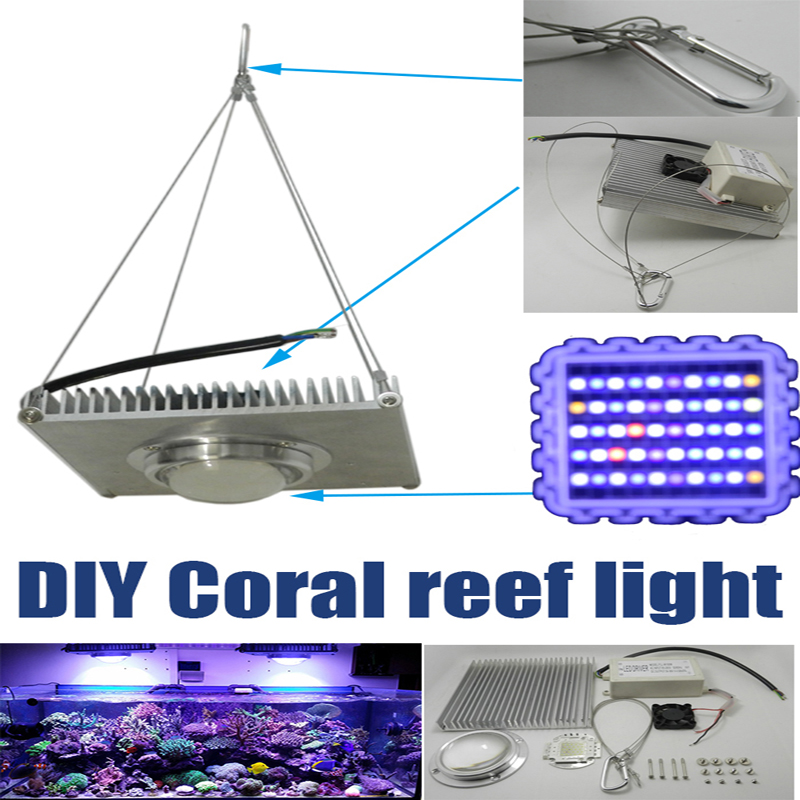 diy 100w aquarium led light golden dragon fish grow light. Black Bedroom Furniture Sets. Home Design Ideas
