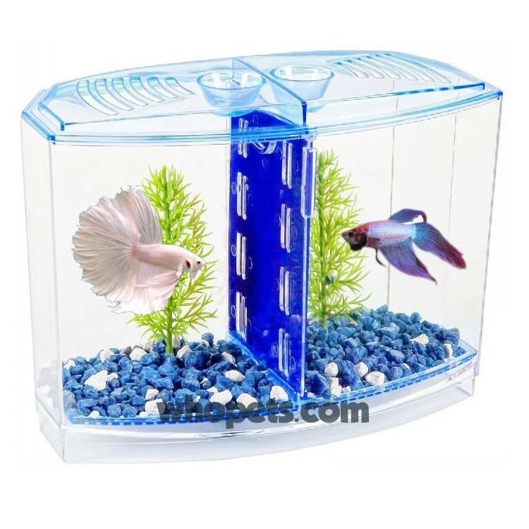 betta fish tank betta house double easy tank for small