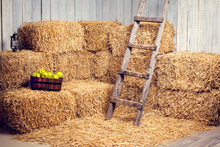5X7ft haystack Vinyl Photography Backdrop Thin fabric cloth Printed background Newborns Portrait Background D-6168