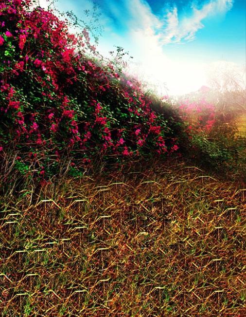 600CM*300CM backgroundsTufted grass weeds photography backdropsvinyl photography backdrop 3226 LK <br><br>Aliexpress
