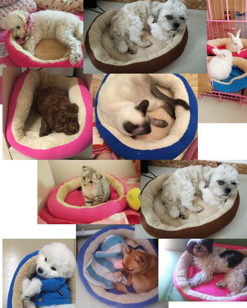 pet kennel- dog house-pet mat 13