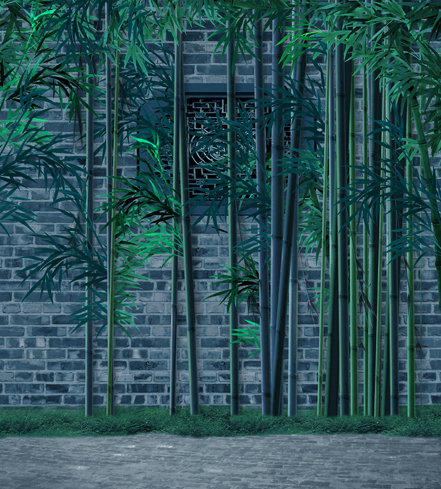 300*600cm(10ft*20ft) Tough backdrops Bamboo photography backdrops Tall and straight<br>