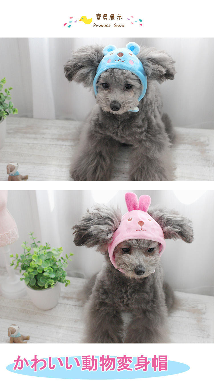 2015 new PetstyleQ head of dog and cat turns into a zoo cap hat pet supplies free shipping(China (Mainland))