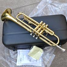 Jinbao musical jbtr-300 the trumpet musical Small b b Small(China (Mainland))