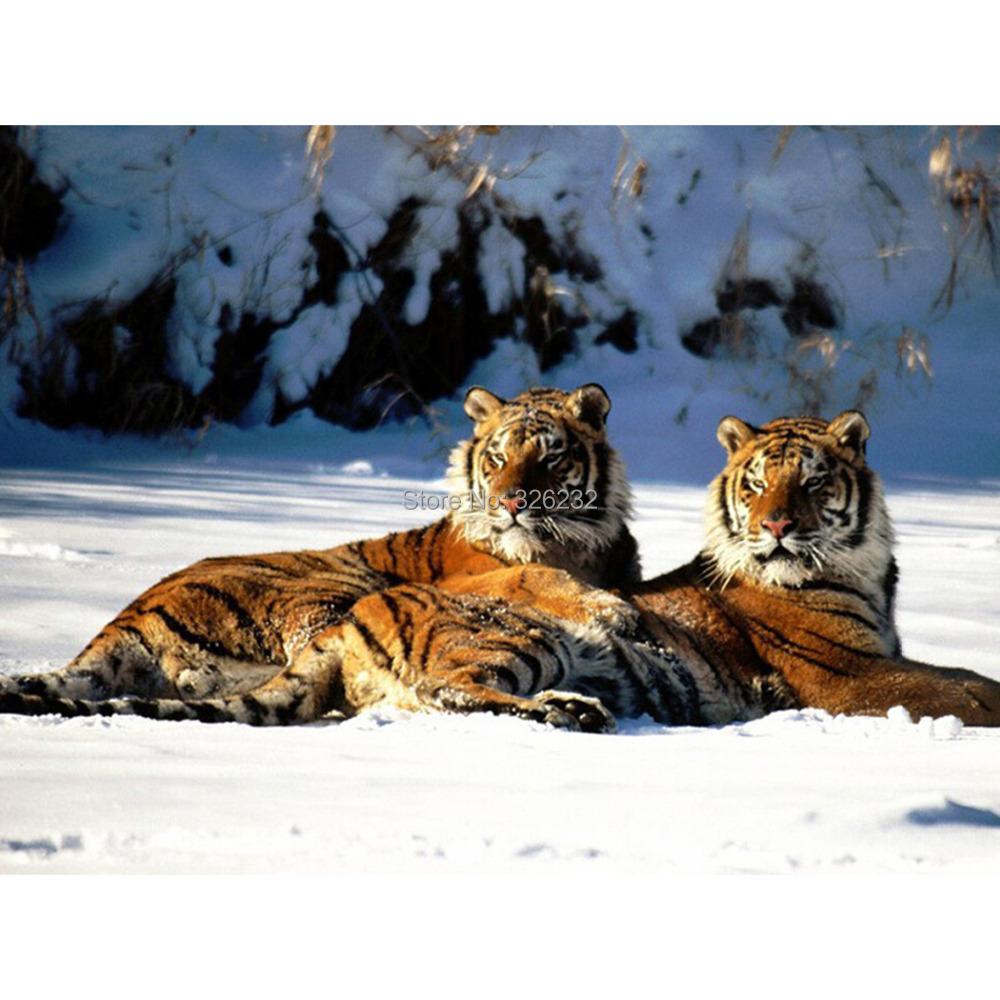 2015 hot sale free shipping DIY full diamond diamond square diamond resin painting 2 tiger 30*40cm(China (Mainland))
