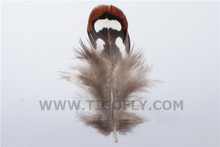 200Pcs/Lot LOOSE Hen Pheasant Shoulder Feathers Fly Tying Material Fly Fishing
