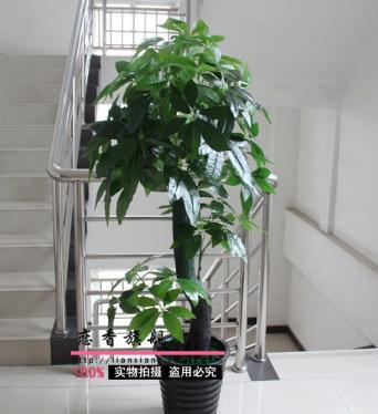 Freeshipping With Pot Total 155cm Artificial Plants Bonsai Artificial Tree Bo