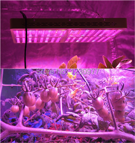 960w LED Grow Light 192pcs*5w, Reflector+Growth&Bloom Switches11 Band High Power Grow Light For Hydroponic Grow, Stock in US/UK(China (Mainland))
