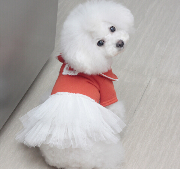 New Fashion pet clothing dogs dress pets clothes spring summer lace tutu dresses doggy skirts 5 pcs/lot free shipping(China (Mainland))