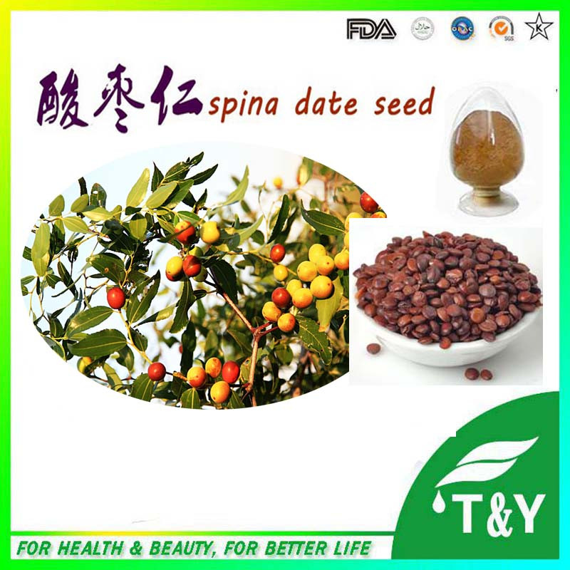 700g/Bag spine date seed extract, spina date seed extract powder, ziziphus jujuba mill extract