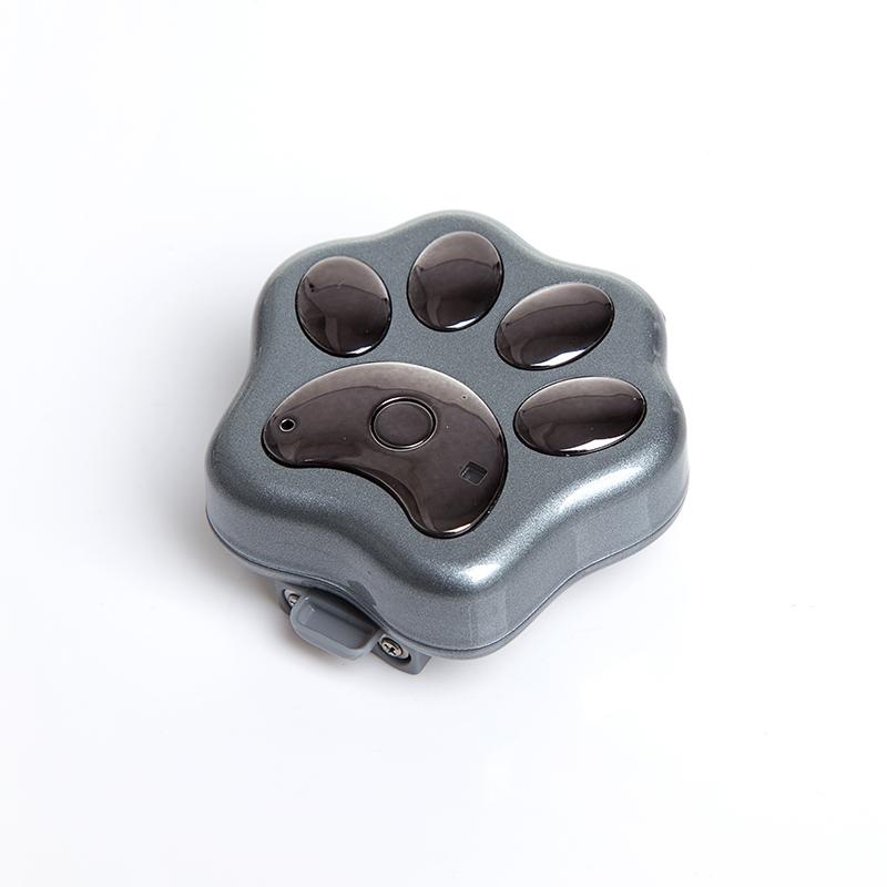 32572043136 besides Index furthermore Sportdog Tek2lt 2dog moreover 123626 likewise Senior Alert. on dog gps tracking device