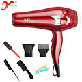 Pro 2600W Hair Dryer Anion Subtle Water Ions Conditioner Thermostat Blow Dryer Long Life AC Motor