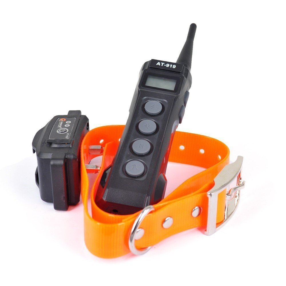 Best Remote Control Dog Collar
