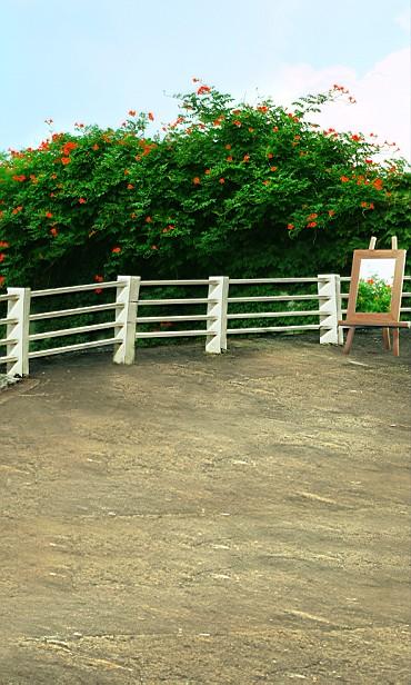 New arrival Background fundo Painting flowers saffron 600CM*300CM width backgrounds LK 2416<br><br>Aliexpress
