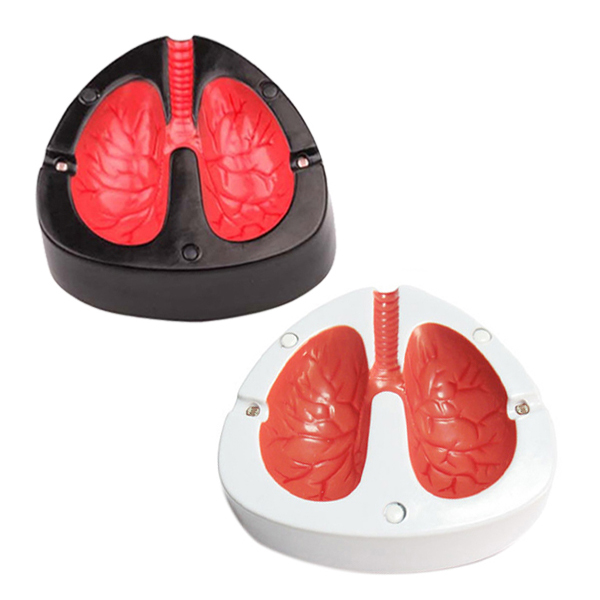 Novelty Design Lung Shape Cough Scream Sound Quit Smoke Stop Smoking Ashtrays E2shopping(China (Mainland))