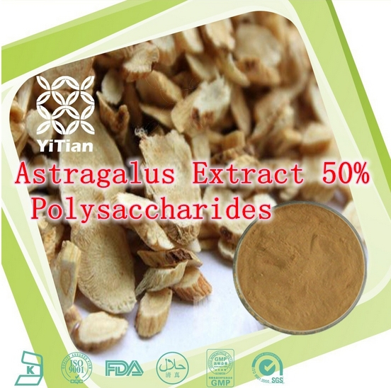 250gram Hotsale Natural Astragalus Extract 50% Polysaccharides Powder free shipping<br><br>Aliexpress