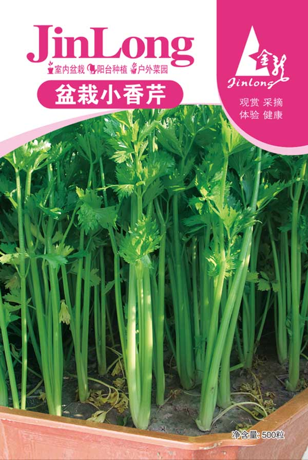 pcs/bag French parsley seeds,four seasons small parsley seeds,vegetable seeds small home garden cultivati free shipping(China (Mainland))