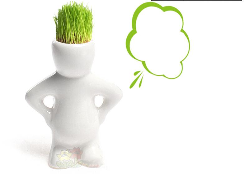 4 Shape Choose Diy Mini Novel Bonsai Grass Doll Hair White Lazy Man Plant Garden(China (Mainland))
