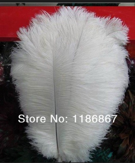 """P012 Free shipping Cheap ostrich feather 10pcs/lot white Ostrich plumage ostrich plume 25-30CM """"10-12""""(China (Mainland))"""