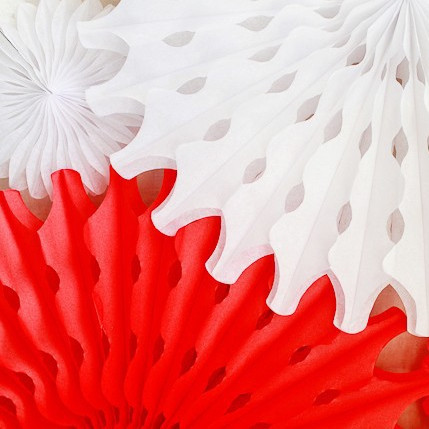"""12""""30cm Tissue Paper Fans For Wedding Decoration Snowflake Decorations Paper hand fan Baby Shower Favors Party Decorations(China (Mainland))"""