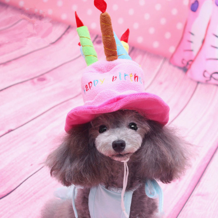 Birthday Cake Caps Pet Hat For Dogs Cats Wonderful Gift dog hats A Cake With Candles Shaped Dog Cap Free Size dog supplies PY663(China (Mainland))