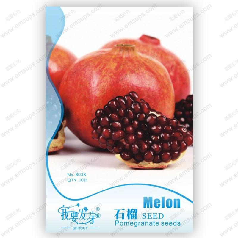 Original pack pomegranate trees seeds high quality pomegranate seeds delicious punica granatum bonsai organic plant - 10 pcs(China (Mainland))