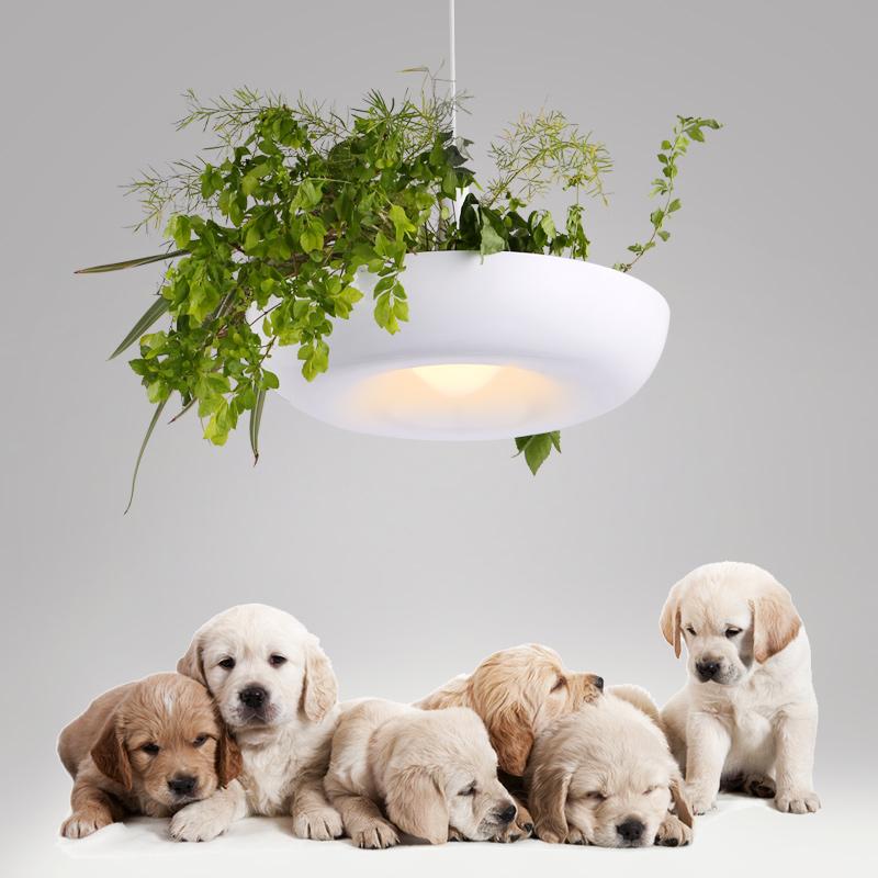 ikea lustre achetez des lots petit prix ikea lustre en provenance de fournisseurs chinois ikea. Black Bedroom Furniture Sets. Home Design Ideas