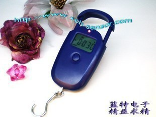 CE certification + overload prevention ; Lanter upscale portable electronic scales, fishing scales(China (Mainland))