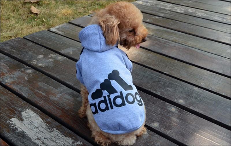 dog's cloth 80px-S9