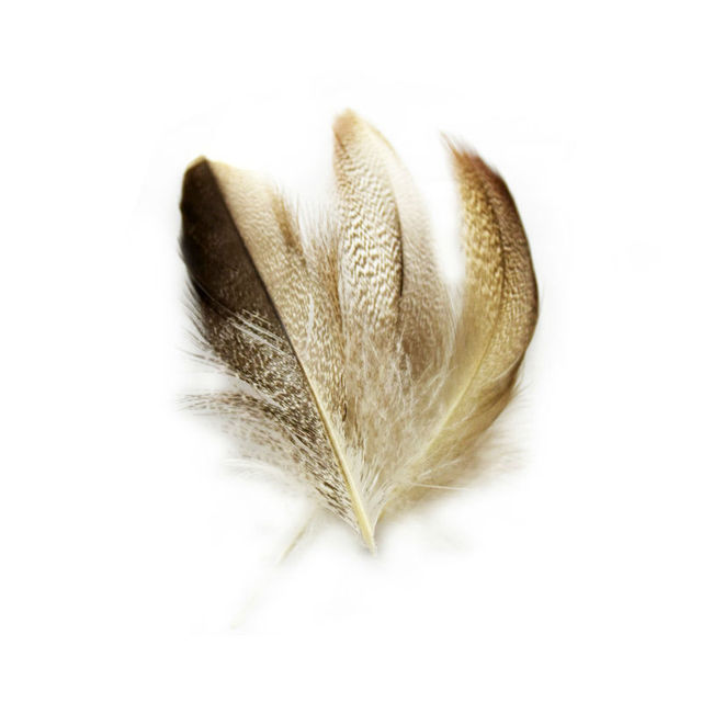 Long 6 to 12 cm Natural Dyed DIY Grey Duck Feathers  Hair Extension Pheasant Feathers for Wedding Decorations IF23