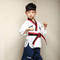 the high end genuine children s Taekwondo wear long sleeved adult male and female Taekwondo